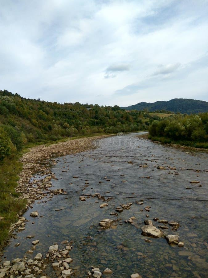 Floden flödar i bergskog royaltyfri fotografi