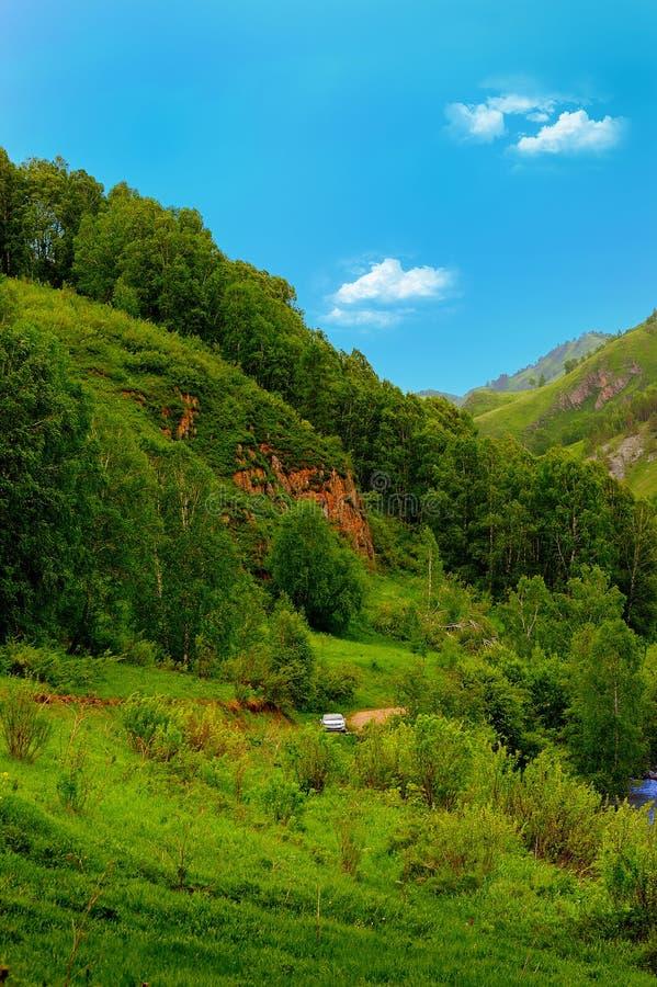 Floden i bergområdet. fotografering för bildbyråer