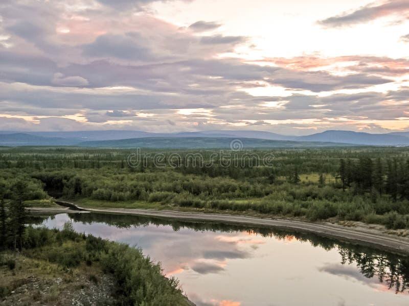 Floden landskap. Nordliga renar i sommarskog himlen, gr arkivbilder
