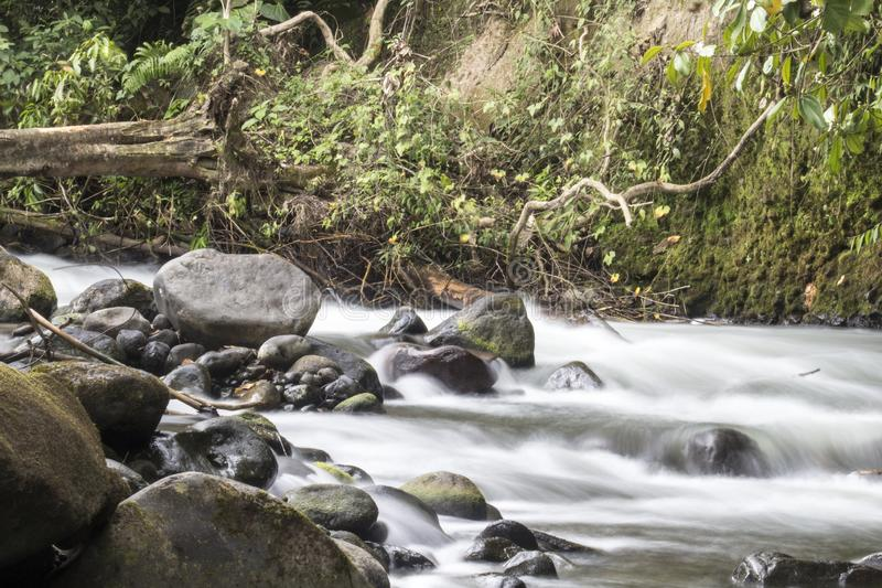 Floden med vaggar royaltyfri fotografi