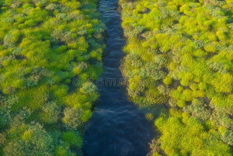 Floden mellan bergen i en solig dag, tolkning 3d vektor illustrationer
