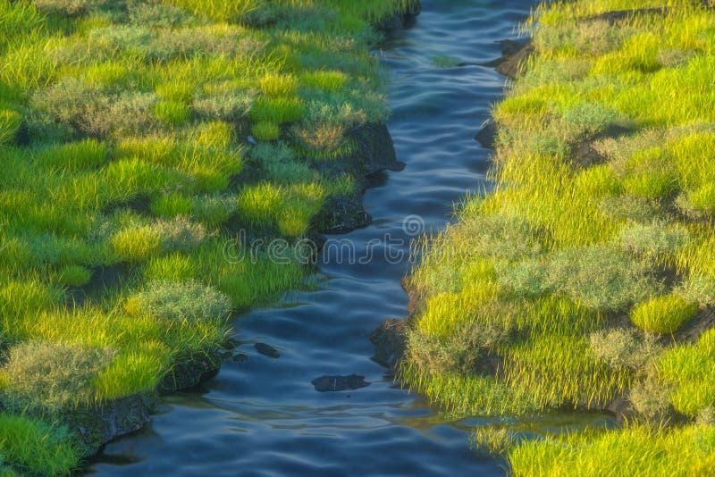 Floden mellan bergen i en solig dag, tolkning 3d stock illustrationer