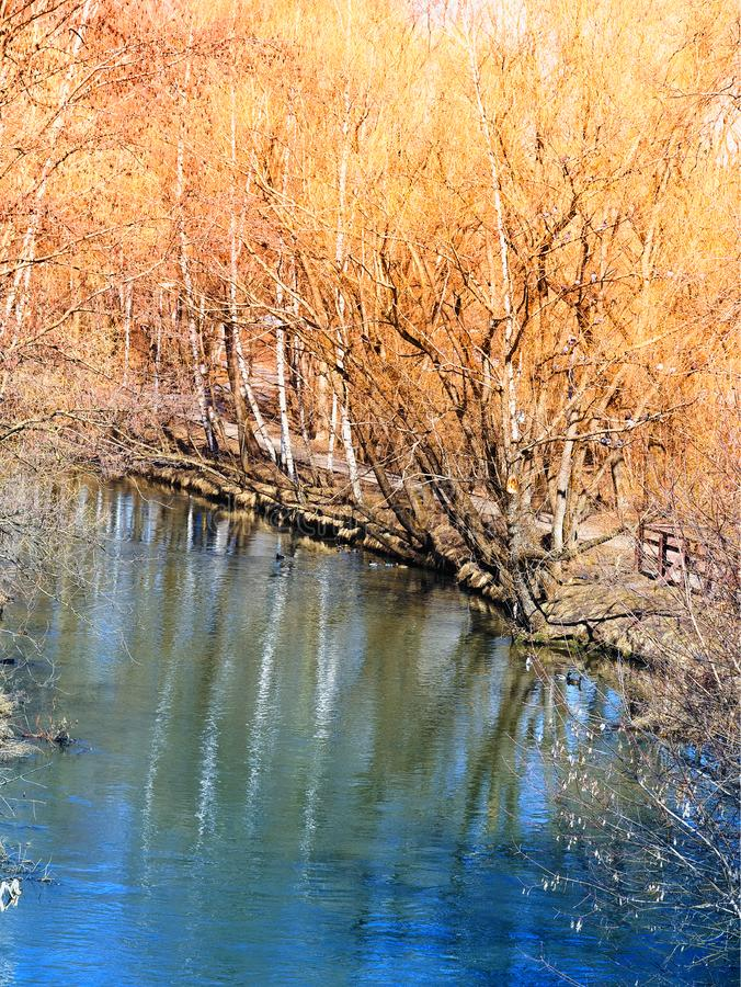 Floden på våren parkerar landskapbakgrundshd arkivfoto