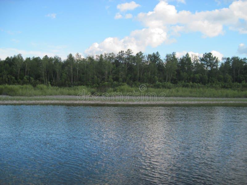 Floden ?r lugna Obetydliga krusningar Skog fotografering för bildbyråer