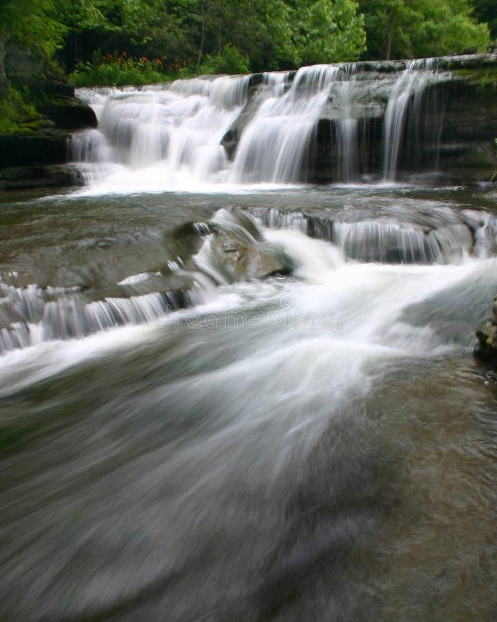 Floden Rusar Royaltyfria Foton
