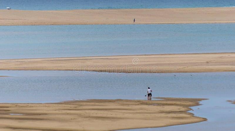 Floden sammanfogar havet royaltyfri bild