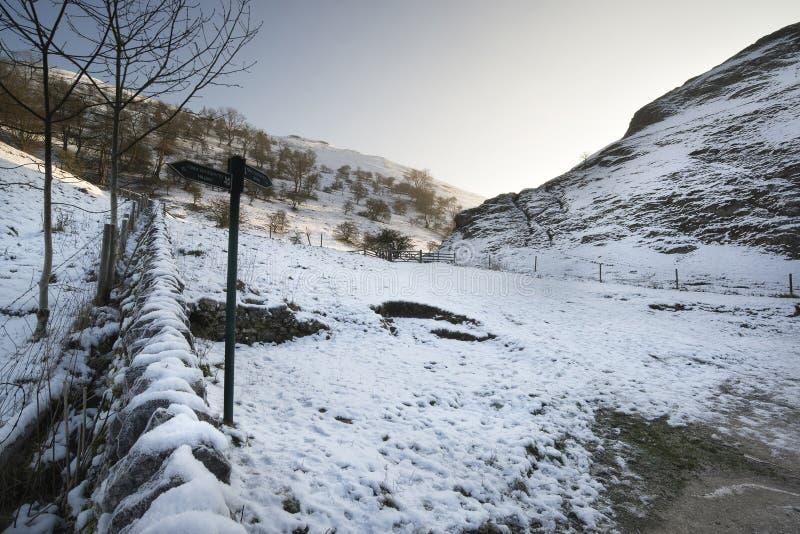 Floden som flödar till och med snö, täckte vinterlandskap i skog arkivfoto