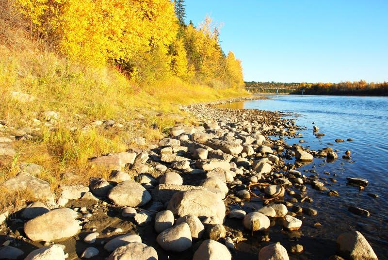 floden stenar dalen arkivfoto