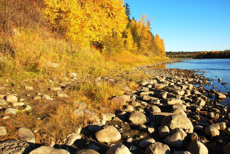 floden stenar dalen royaltyfri bild
