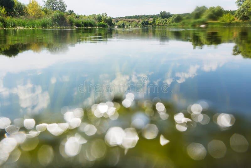 Floden Summer royaltyfri bild