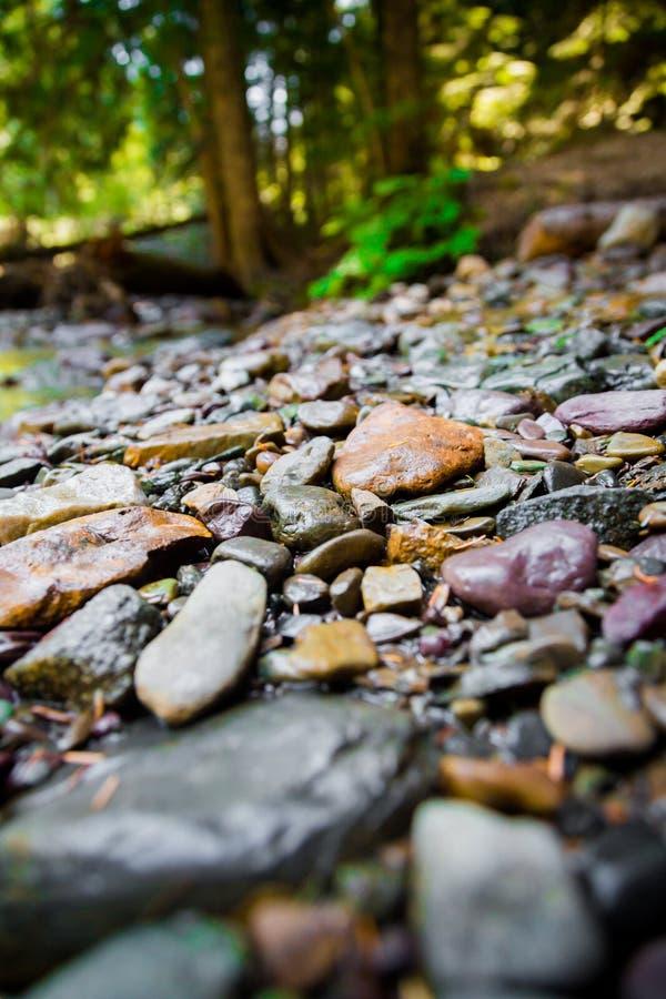 Floden vaggar med suddig bakgrund royaltyfri fotografi