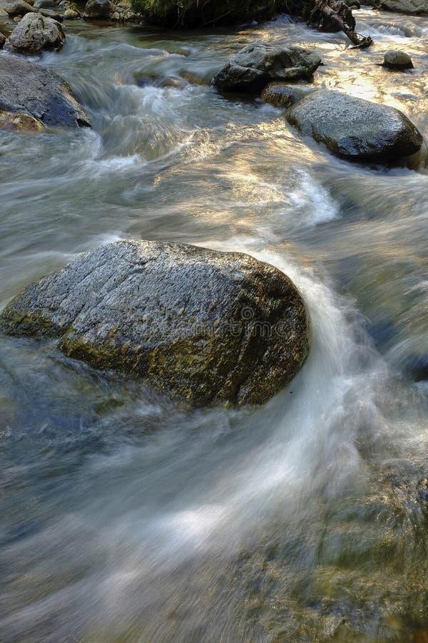 floden vaggar stenvatten royaltyfri bild