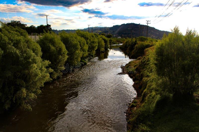 floder arkivbilder