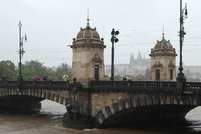 Floder i Prague, Tjeckien, Juni 2013 royaltyfri fotografi