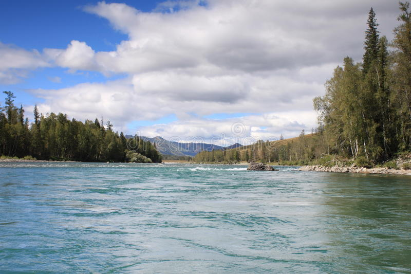 Floder och berg av cederträ längs bankerna royaltyfria foton
