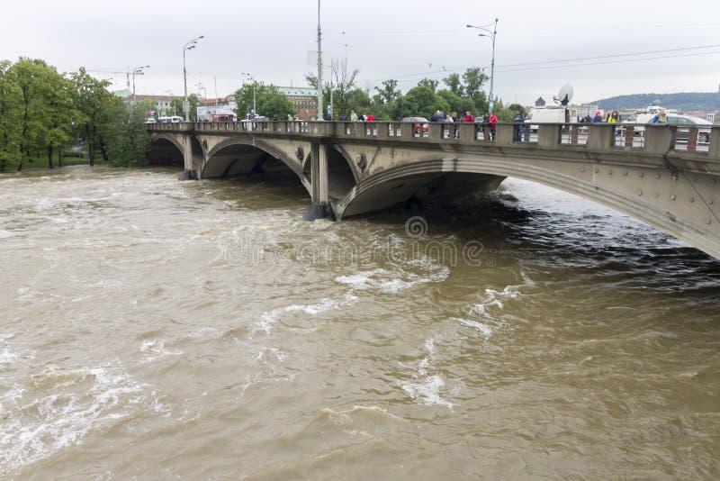 Floder Prague Juni 2013 royaltyfria foton