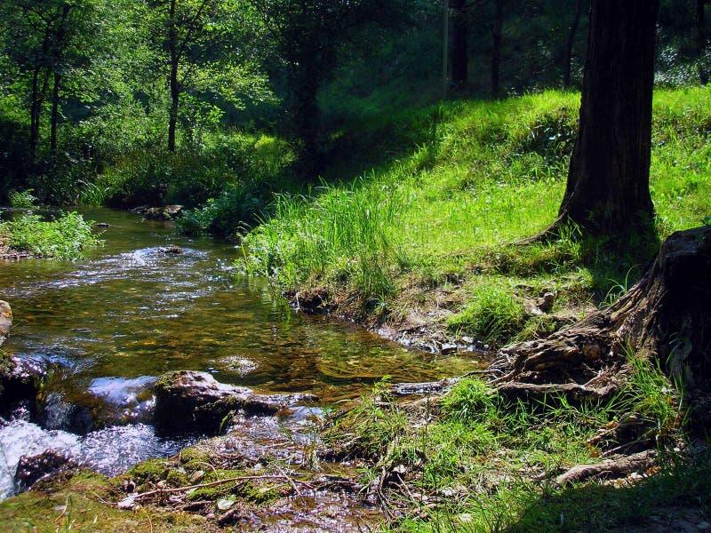 Floderna flödar i dig royaltyfri fotografi