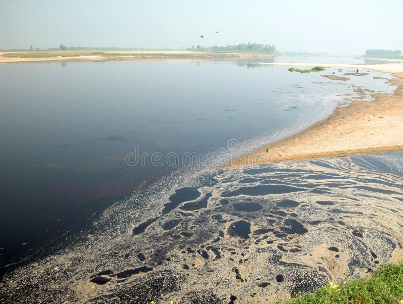 Flodförorening royaltyfria bilder