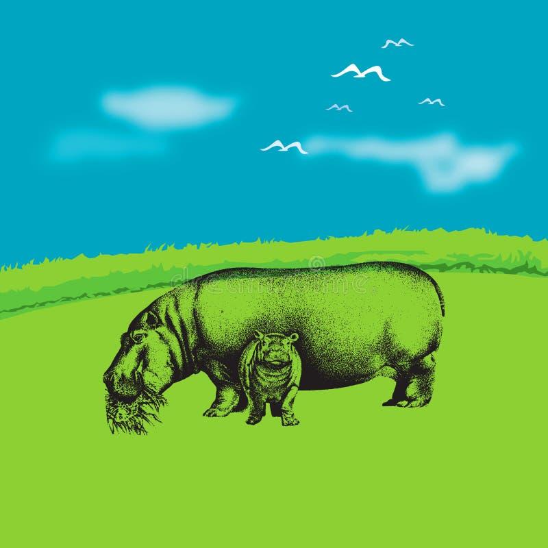 flodhäst s royaltyfri illustrationer