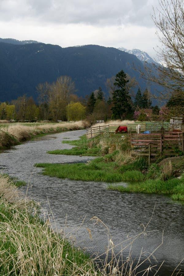 Flodkörningar Royaltyfri Foto