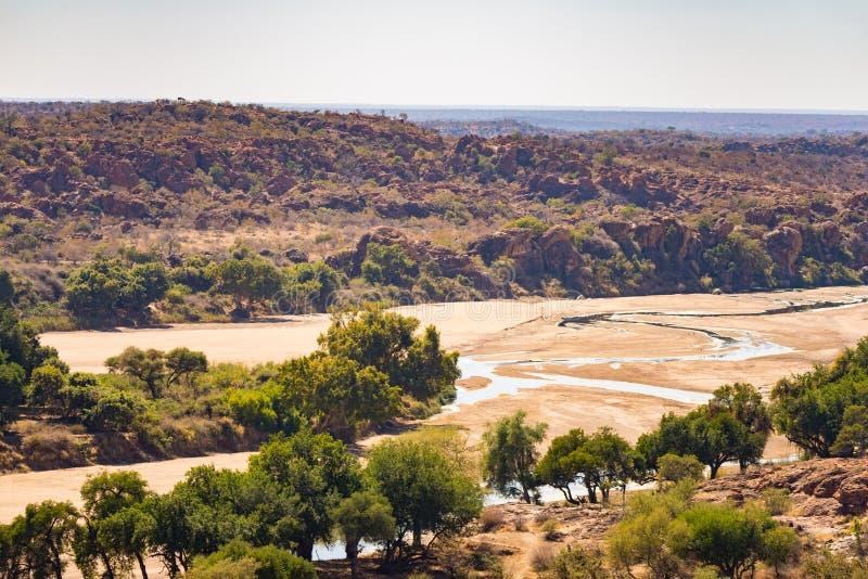 Flodkorsning ökenlandskapet av den Mapungubwe nationalparken, loppdestination i Sydafrika Flätad akacia och enorma Baoba fotografering för bildbyråer