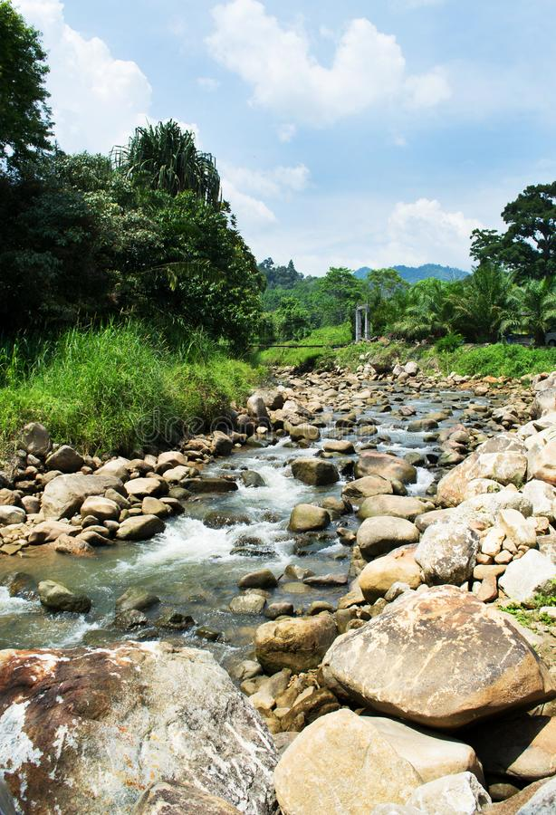 Flodlandskap med blå himmel, natur fotografering för bildbyråer