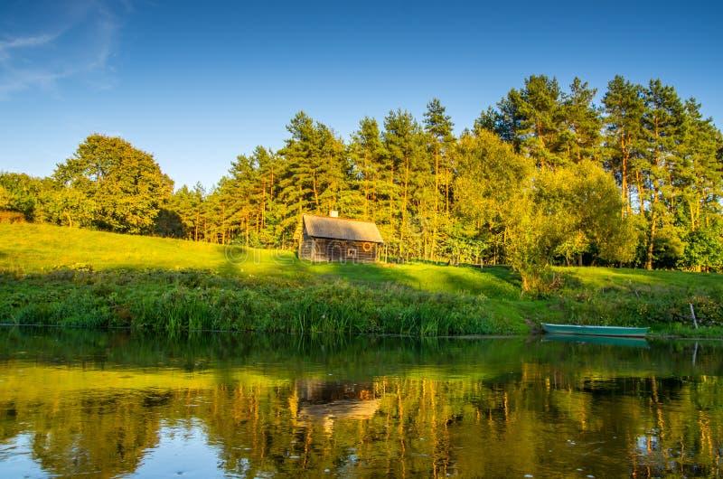Flodlandskap nära skog royaltyfria bilder