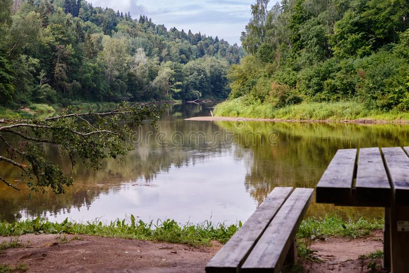flodlandskapet med de stupade träden och vilaställena royaltyfri bild