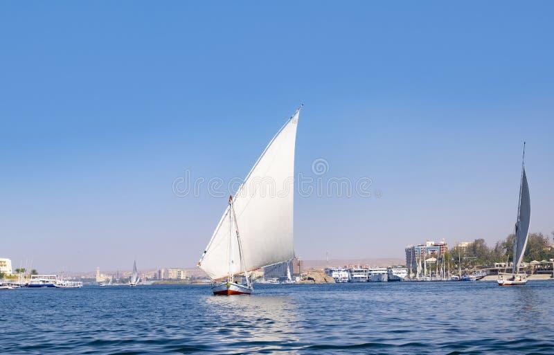FlodNilenkryssning på en felucca, en traditionell segelbåt royaltyfri fotografi