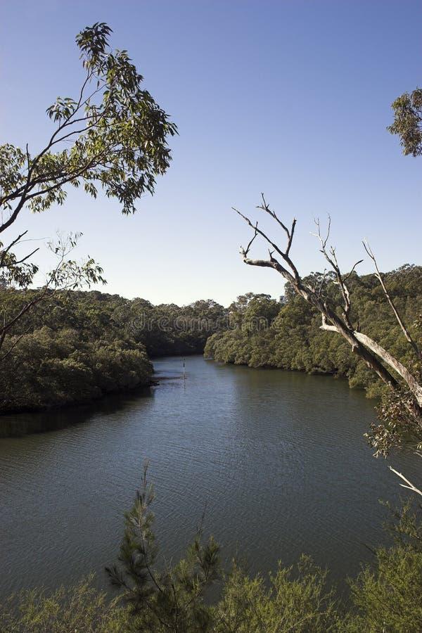 Download Flodsikt arkivfoto. Bild av flod, vatten, flöda, navigering - 276478
