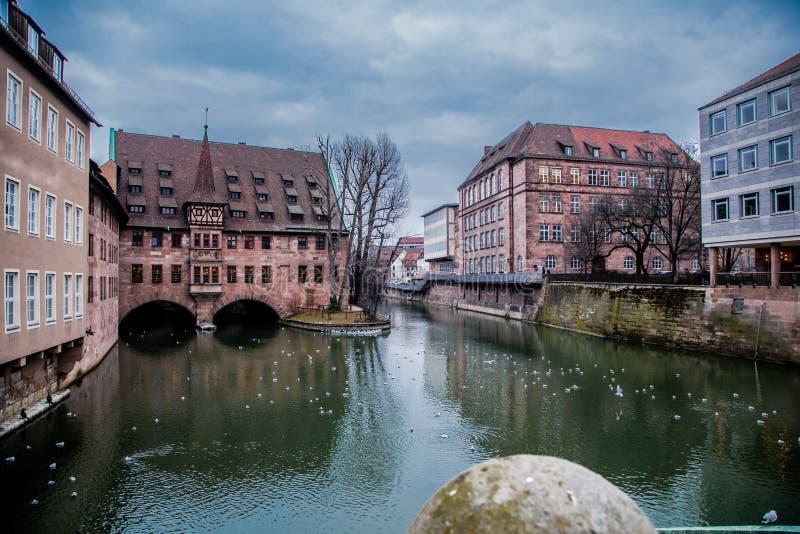 Flodsikt i Nuremberg, badseagulls fotografering för bildbyråer