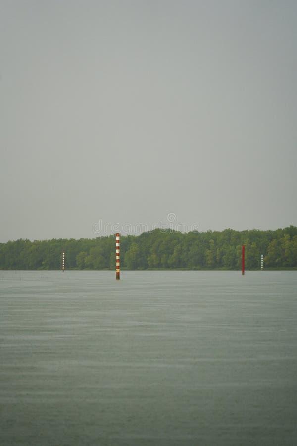 Flodskogfarled arkivbild