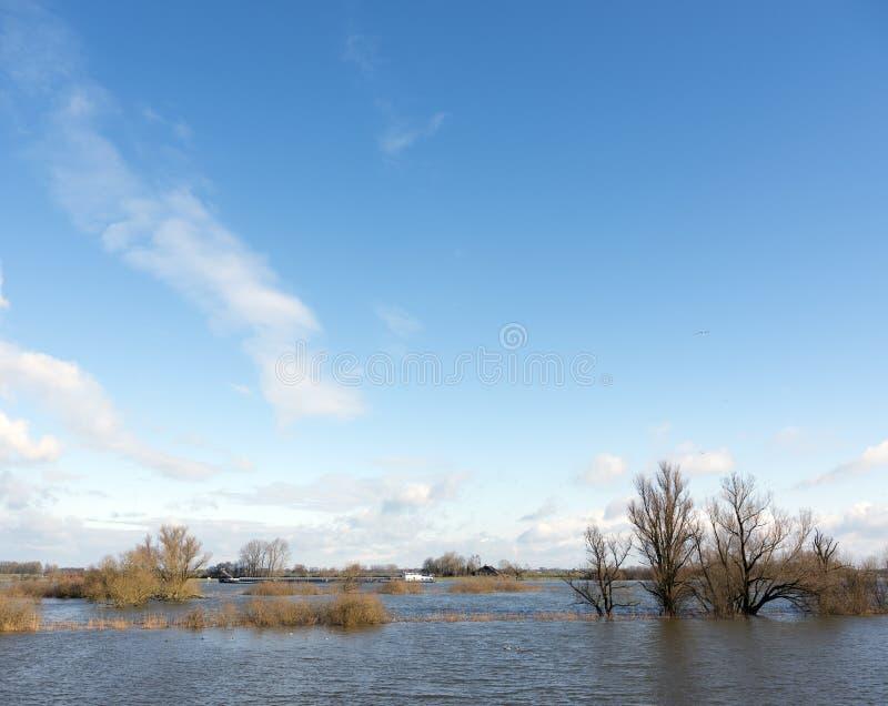 Flodslättar av det flodijssel och skeppet nära Zalk mellan Kampen och Zwolle i Nederländerna royaltyfria foton