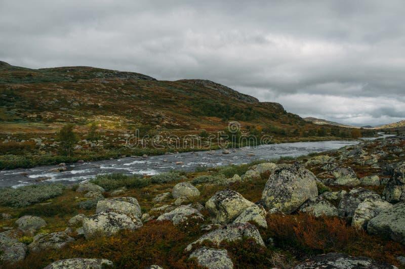 flodström som går till och med stenar och kullar på fältet, Norge, Hardangervidda royaltyfri bild