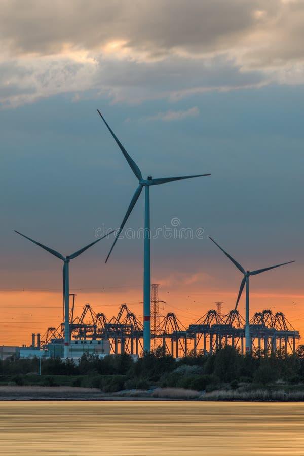 Flodstrand med stora väderkvarnar och konturer av behållarekranar under solnedgång, port av Antwerp royaltyfri fotografi