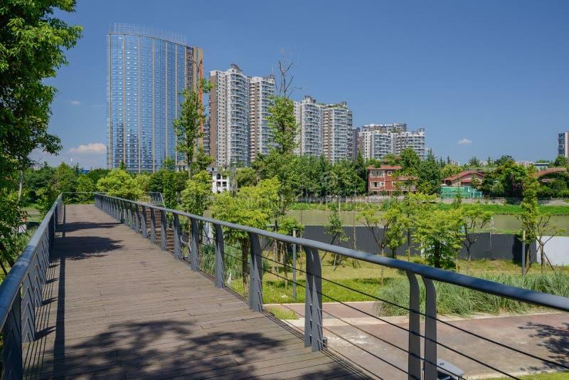Flodstranden planked spången i modern stad av den soliga grönskande summan royaltyfria foton