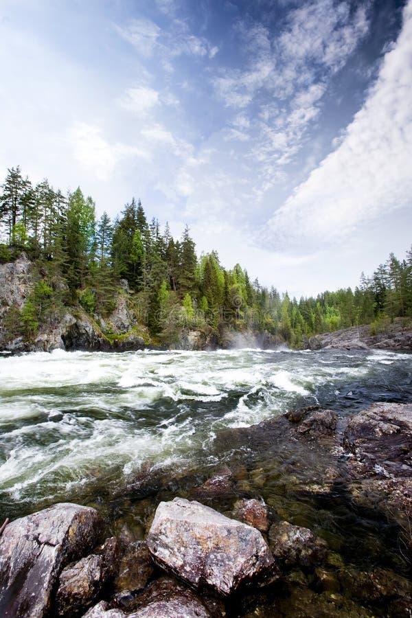flodvattenwhite arkivbilder