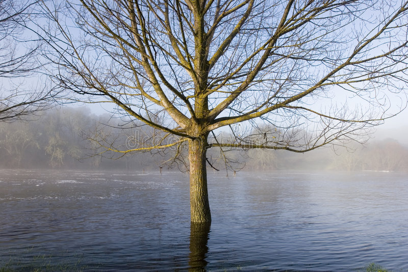 Download Flood Royalty Free Stock Images - Image: 4431849