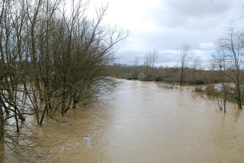 Download Flood in the countryside stock image. Image of river - 38429933
