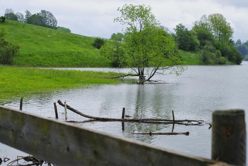 Flood - flooded green areas royalty free stock photography