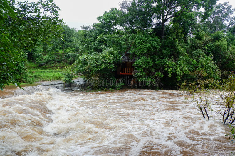 Flood Stage. In streams From the mountains After rain rainy season royalty free stock photos
