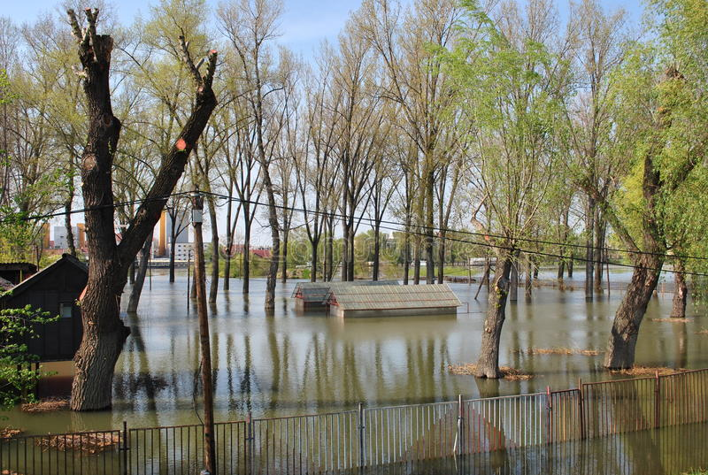 Flood. Usual flood in Hungary in Spring stock images