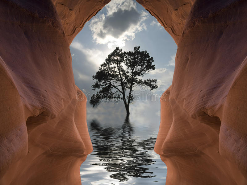 Flooded Cavern and tree. Flooded Symmetrical Cavern and Tree royalty free illustration