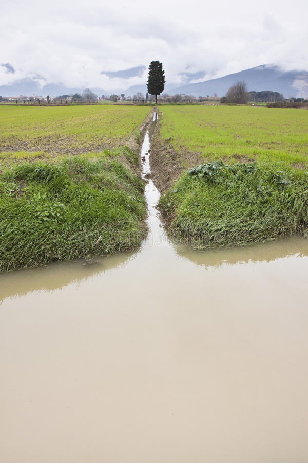Flooded fields - Fields flooded after several days of rain stock photo