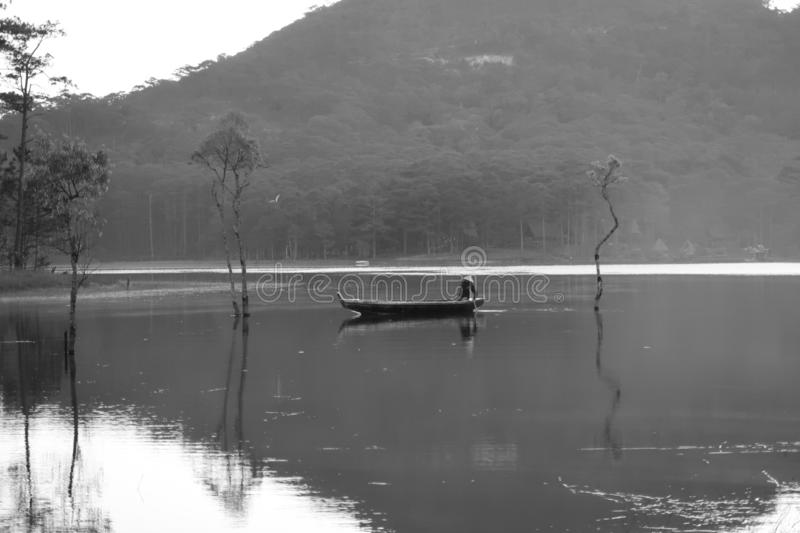 Flooded forest reflection on the lake with boatman in magic light part 54. Submerged trees with green fresh leaves reflecting on the lake and the boatman at stock photography