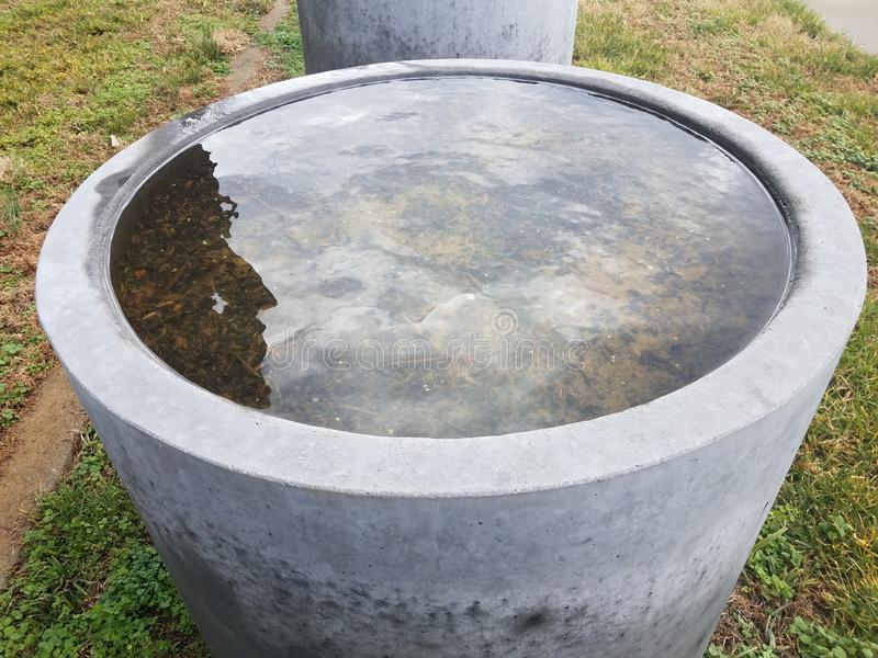 Flooded grey cement flower pot filled with water in green grass. Or lawn stock image