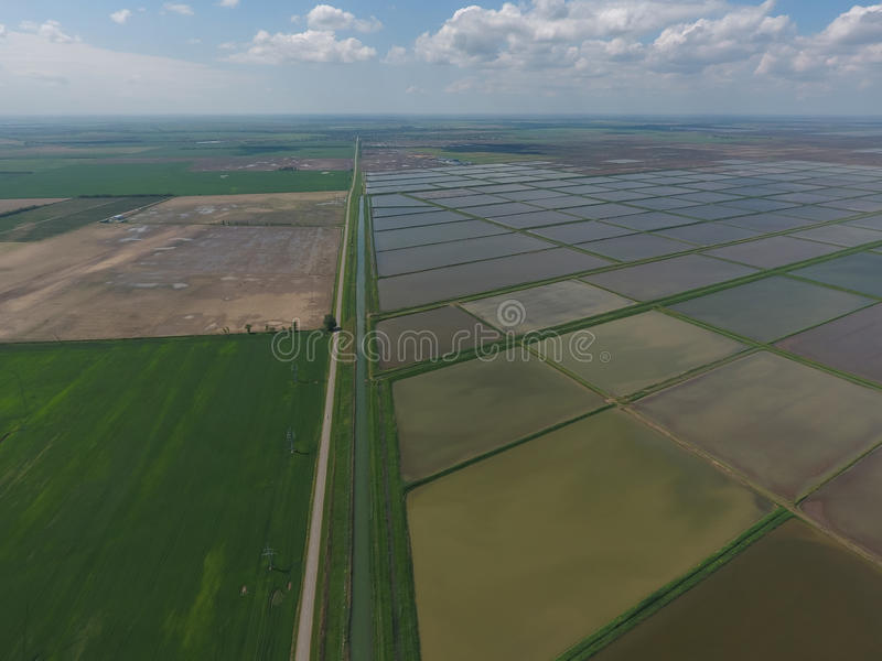 Flooded rice paddies. Agronomic methods of growing rice in the fields. Flooding the fields with water in which rice sown. View from above stock photos