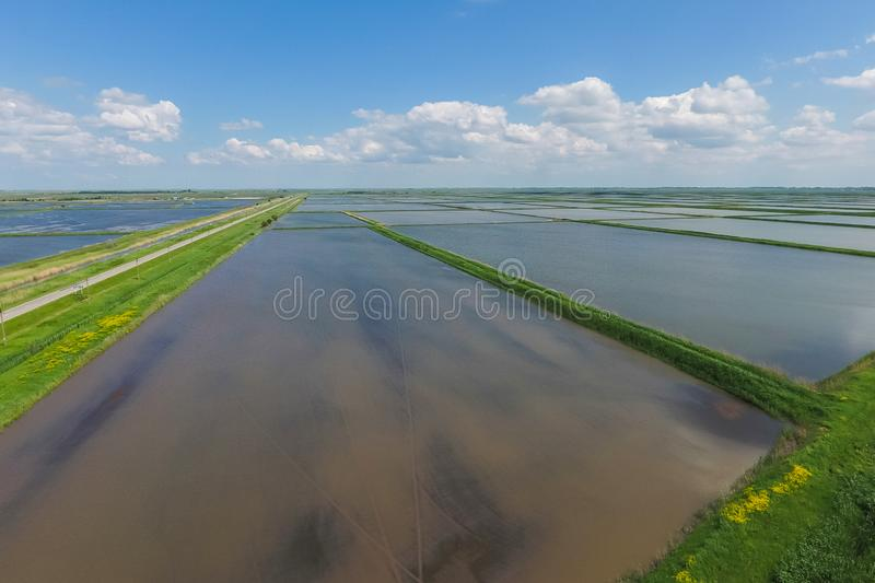 Flooded rice paddies. Agronomic methods of growing rice. In the fields. Flooding the fields with water in which rice sown. View from above royalty free stock photography