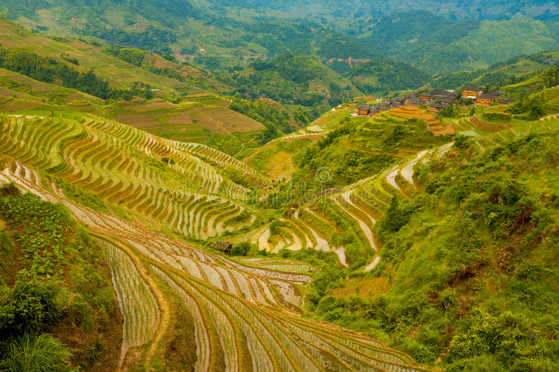 Download Flooded Rice Terrace Valley Traditional Village Stock Photo - Image: 17451880