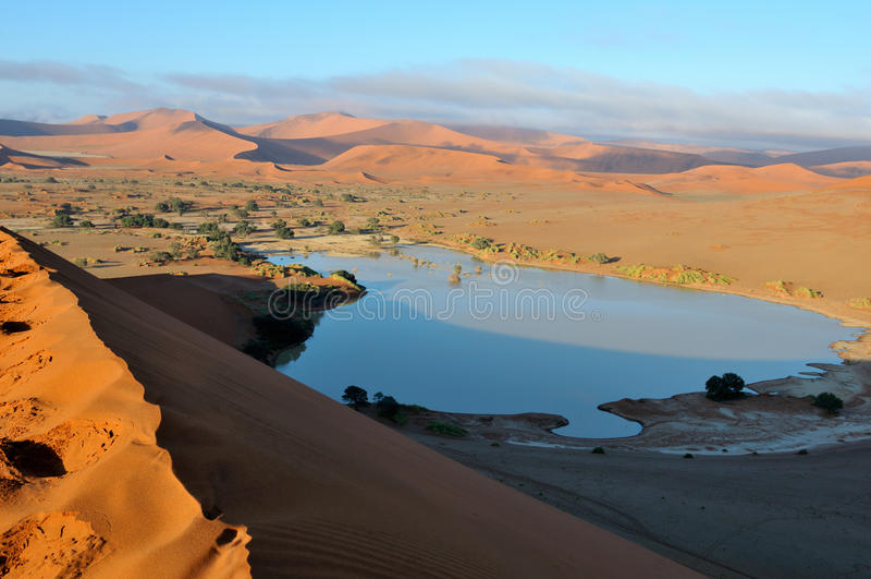 A flooded Sossusvlei in the Namib Desert royalty free stock images